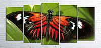 Модульная картина на холсте 5 в 1 Бабочка 100х200 см (секции разного размера)