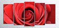 Модульная картина на холсте 5 в 1 Большая роза 100х200 см (секции разного размера)