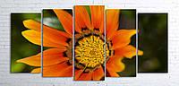 Модульная картина на холсте 5 в 1 Оранжевый цветок 100х200 см (секции разного размера)