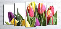 Модульная картина на холсте 5 в 1 Тюльпани на белом 100х200 см (секции разного размера)