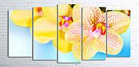 Модульная картина на холсте 5 в 1 Орхидеи 100х200 см (секции разного размера)