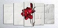 Модульная картина на холсте 5 в 1 Красный цветок в белой вазе 100х200 см (секции разного размера)