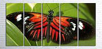 Модульная картина на холсте 5 в 1 Бабочка 100х200 см