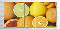 Модульная картина на холсте 5 в 1 Фрукты 100х200 см