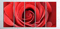 Модульная картина на холсте 5 в 1 Большая роза 100х200 см