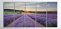 Модульная картина на холсте 5 в 1 Лавандовое поле 100х200 см