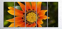 Модульная картина на холсте 5 в 1 Оранжевый цветок 100х200 см