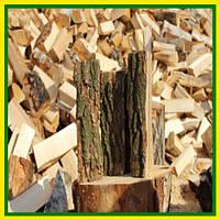 Дуб на дрова