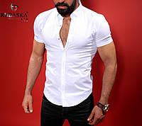 Однотонная мужская рубашка, белая, фото 1