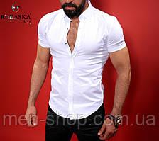 Однотонная мужская рубашка, белая