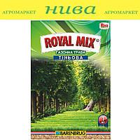 Тіньова насіння газонних трав Royal Mix 1 кг