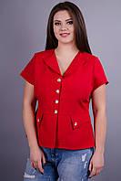 Виола. Стильный пиджак больших размеров. Красный.
