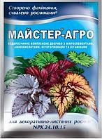 Мастер (Майстер-агро) для декоративно-лиственных растений, 25г