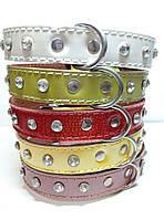 Ошейник для собак кожаный  лак-цветной, стразы 25мм