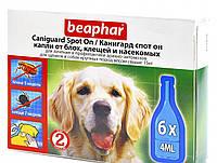 Caniguard Spot On капли от блох и клещей для щенков и собак крупных пород Beaphar