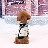 """Куртка, пальто для собаки """"Джентльмен"""". Одежда для животных, фото 2"""