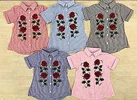 Детская рубашка  стильная   для девочки .Турция