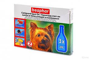 Caniguard Spot On краплі від бліх та кліщів для цуценят і собак дрібних порід Beaphar