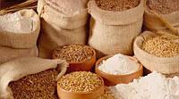 Куда направляются украинские зерновые?