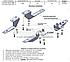 Подножки боковые для Шевролет Каптива (в стиле БМВ Х5), фото 5