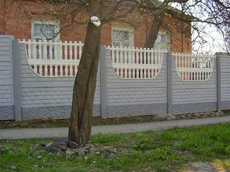 """Еврозабор """"Бут"""" низ 30 см., фото 2"""