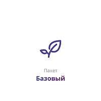 Пакет услуг «Базовый» - Базовое продвижение