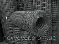 Сетка сварная  25х12,5 (0,8), фото 1