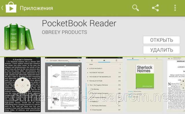 pocket book reader