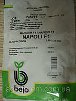Семена моркови  Наполи 25000 с(1,8 - 2), фото 1
