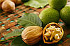 Грецкие орехи предупреждают возрастную потерю зрения