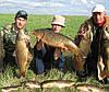 MEGA FISH -Активатор клева 2в1 производство США,Прикормка На Карпа , фото 3
