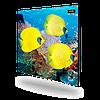Керамічна панель обігрівач DIMOL Standart Plus 03(з малюнком)