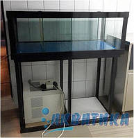 Аренда аквариума для содержания устриц