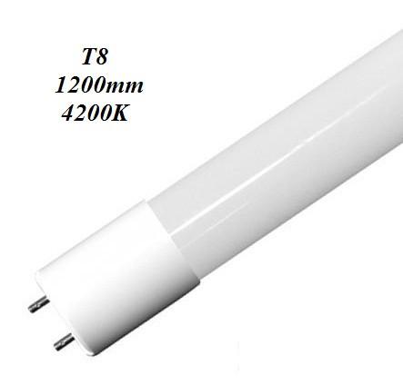 LED лампа Biom T8 18W 4200K 1,2м