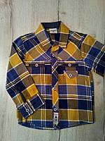 Детская рубашка для мальчика 12953 Турция