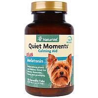 NaturVet, Quiet Moments Plus Melatonin,Calming Aid, For Dogs, 30 Chewable Tabs, 3.1 oz (90 g)