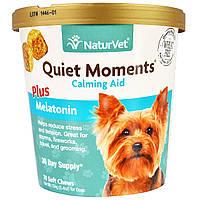 NaturVet, Quiet Moments, Calming Aid Plus Melatonin, 70 Soft Chews