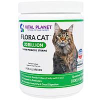 Vital Planet, Flora Cat, 20 Миллиардов, 3,92 унции (111 г)