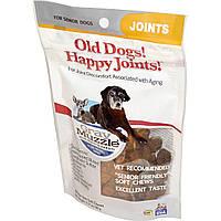 Ark Naturals, Добавка для старых собак Gray Muzzle, Old Dogs! Старые кости! Здоровые суставы, 90 мягких жевательных конфет, 3.17 унций (90 г)