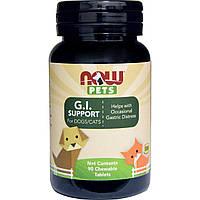 Now Foods, Ptes, здоровье пищеварительной системы собак/кошек, 90 жевательных таблеток
