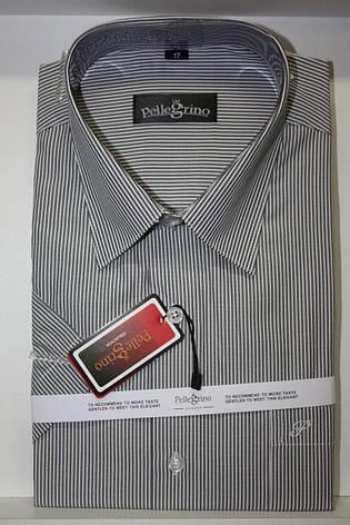 Сорочка з коротким рукавом Pellegrino, фото 2