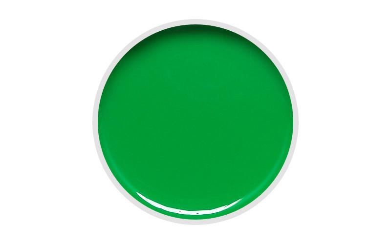 Цветной гель DIS 5 гр. 011 (neon green)