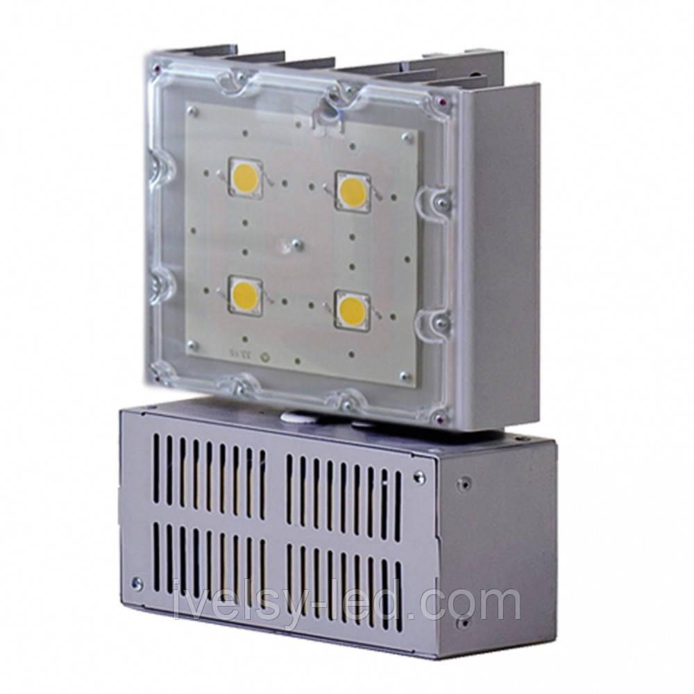 Cветильник  светодиодный СЭС 4-65