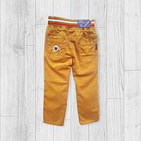 Яркие штаны чиносы для мальчика