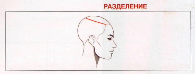 Создаем подковообразную секцию на макушке головы и закрепляем ее