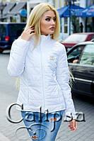Куртка со змейкой Шанель 9021 (ХАЛ) Норма