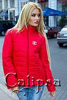 Куртка со змейкой Шанель 9021 (ХАЛ) Батал
