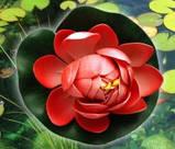 Цветок Лотоса декоративный плавающий 10 х10х5 см(водяная лилия) розовый, фото 2