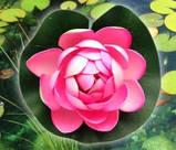 Цветок Лотоса декоративный плавающий 10 х10х5 см(водяная лилия) оранжевый, фото 2