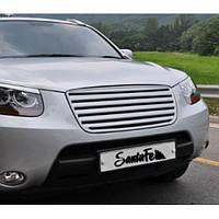 Решетка радиатора C-TYPE (ABS) - Hyundai Santa Fe CM (MORRIS)